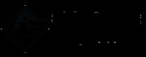 sidestreet_logo